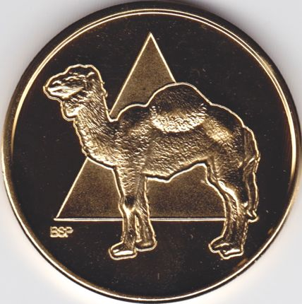 AA Camel Coin Gold Plated