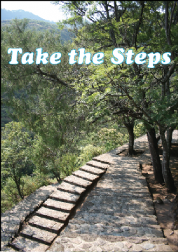 Take the Steps
